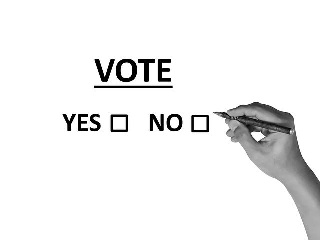 Läs mer om artikeln Resultatet av omröstningen